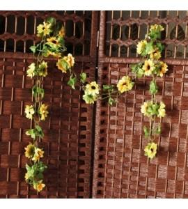 Rampicante con fiori