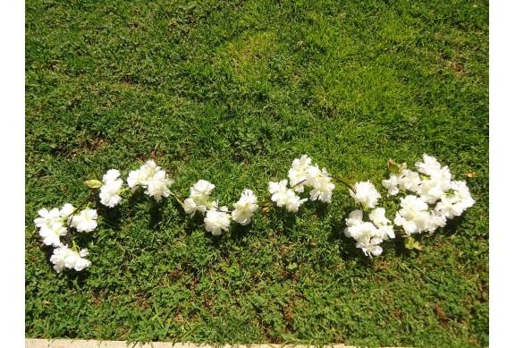 Rampicante con fiori di pesco (vari colori)